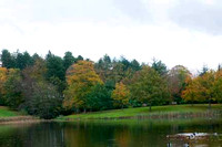 Painshill Park - Autumn
