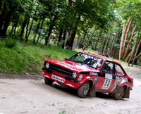 Goodwood Festival of Speed-Forest Rally Stage