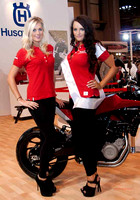 Motorcycle Live-Bike Babes