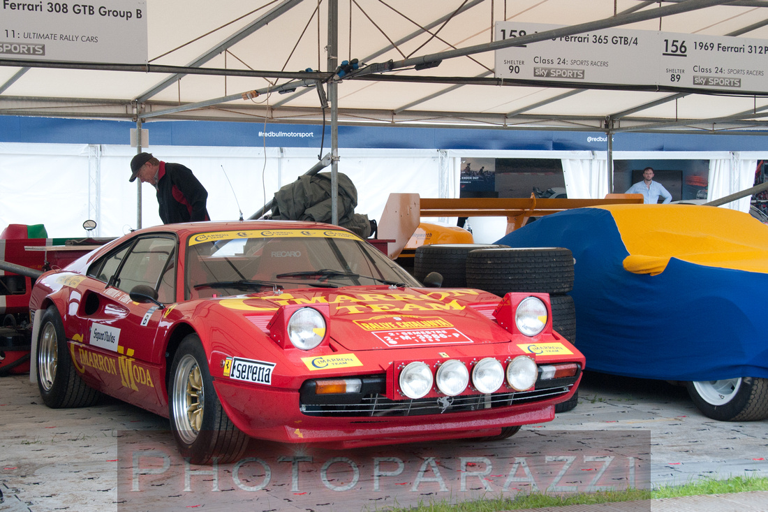 """Festival of Speed"" - Thursday - ""Moving Motor Show"""